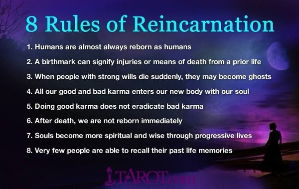 Two Proof of Reincarnation Videos
