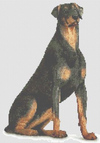 Rottweiler Dog Cross Stitch Pattern