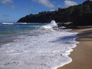 Kauai Talk's Services and Products